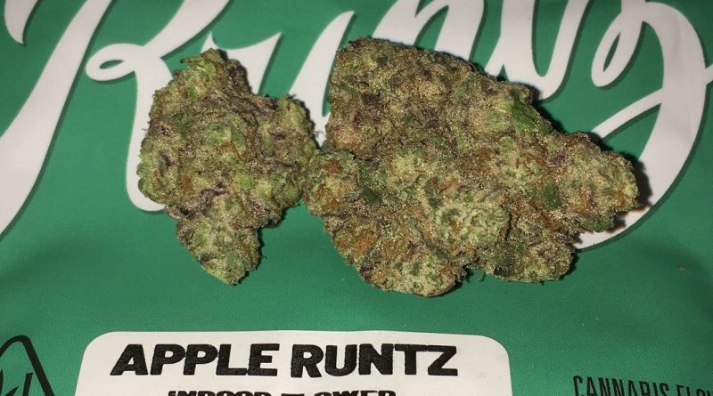apple runtz by newszn strain review by boofbusters420