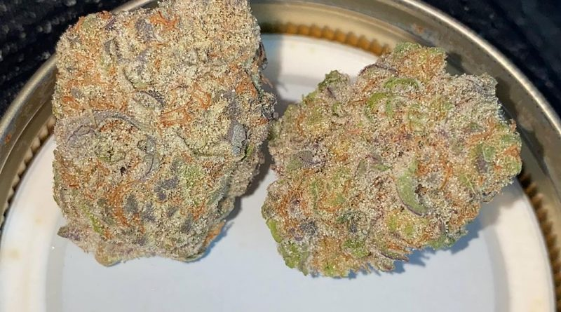 banana punch by snaxland strain review by no.mids