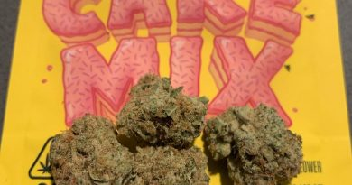cake mix by lemonnade x mad cow genetics strain review by christianlovescannabis