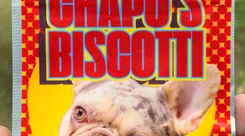 chapo's biscotti by kush rush exotics strain review by budfinderdc 2