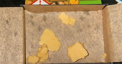 fuel biscuits wax by kayak cannabis concentrate review by no.mids
