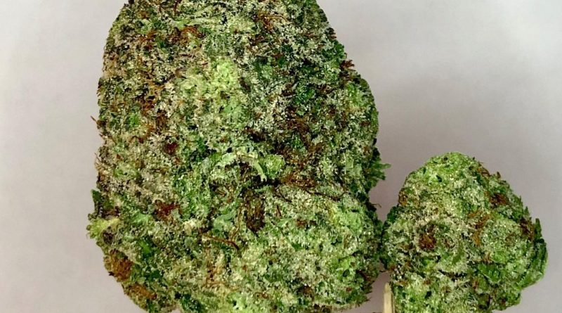 god's green crack by jordan of the islands strain review by cannabisseur604