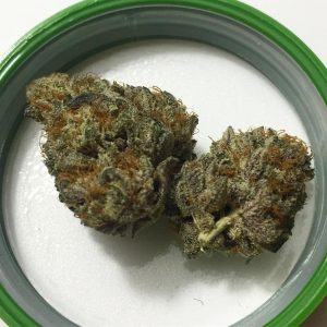 grape sugar cookies by bedford grow strain review by fullspectrumconnoisseur