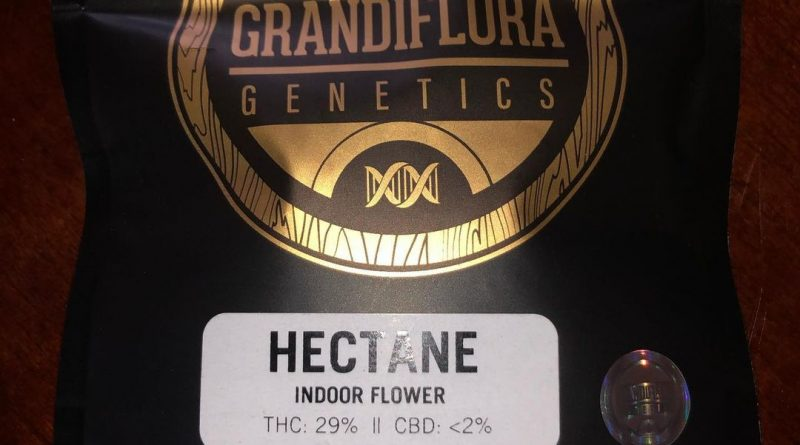 hectane by grandiflora genetics strain review by qsexoticreviews