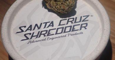 hemp shredder by santa cruz shredder grinder review by the_originalcannaseur