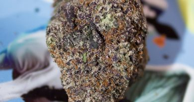 holy cow by jelly cannabis co. strain review by bigwhiteash