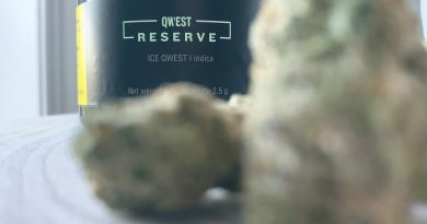 ice qwest by qwest reserve strain review by brandiisbaked