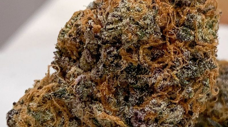 larry's breath by georgetown flavors strain review by budfinderdc