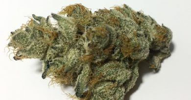 layer cake by rythm strain review by fullspectrumconnoisseur