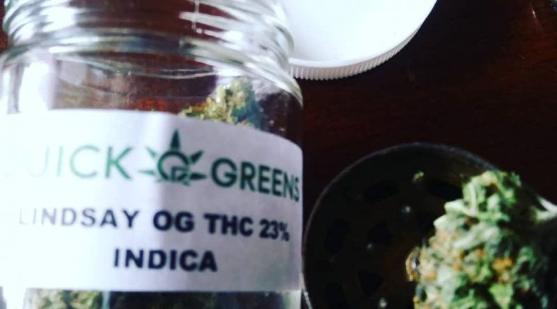 lindsay og by quick greens strain review by hippie_budz