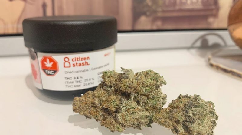 mac1 by citizen stash strain review by brandiisbaked