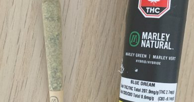 marley green preroll by marley natural strain review by brandiisbaked