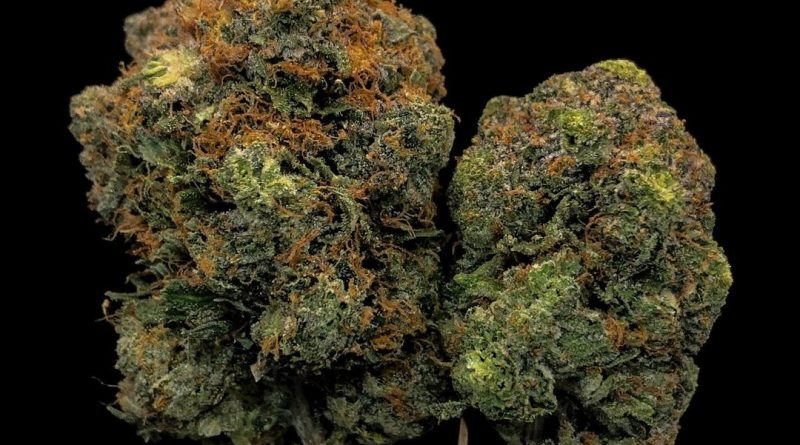 master bubba strain review by cannabisseur604