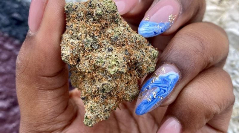 meat breath by loganlocal strain review by upinsmokesession