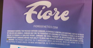 milk n cookies #71 by fiore genetics strain review by qsexoticreviews