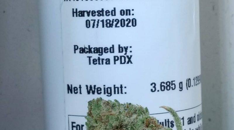 mimosa by oregon greens enterprises strain review by pdxstoneman