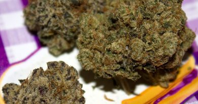 peanut butter and jelly by f.r.i.t.z strain review by bigwhiteash
