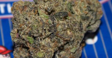 rookie of the year by f.r.i.t.z strain review by bigwhiteash