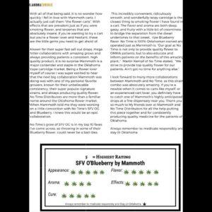 sfv o blueberry cartridge by mammoth carts vape review by okcannacritic 2