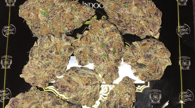 super tropicana by lionboldt farms strain review by boofbusters420