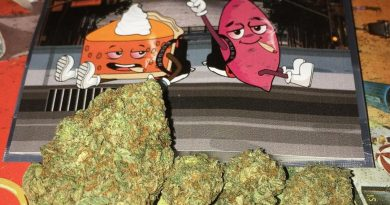 sweet potato pie by backpack boyz strain review by boofbusters420