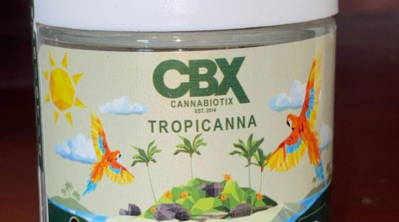 tropicanna by cannabiotix strain review by qsexoticreviews