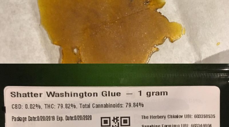 washington glue shatter by sunshine farms concentrate review by 502strainsheet