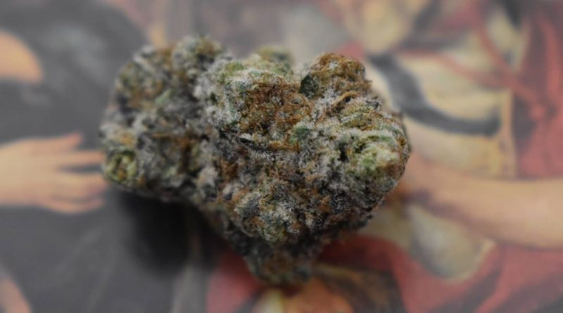 wedding crasher by symbiotic genetics strain review by _scarletts_strains_ 2