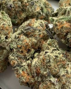 zombie og by georgetown flavors strain review by budfinder 2