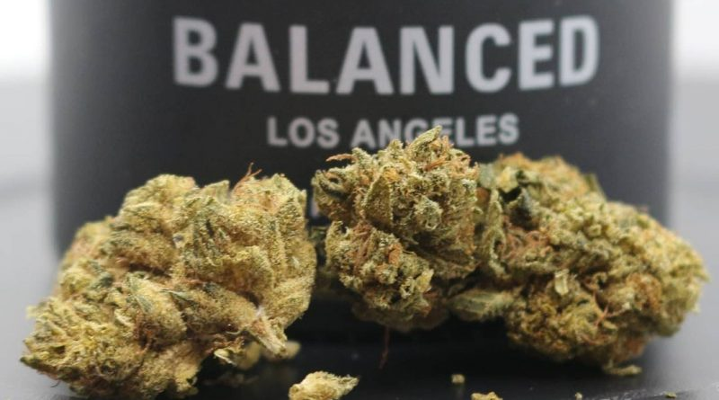 designer og by balanced los angeles strain review by cannasaurus_rex_reviews