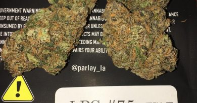 london pound cake #75 by parlay strain review by boofbusters420