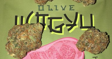 olive wagyu by the rare la strain review by boofbusters420