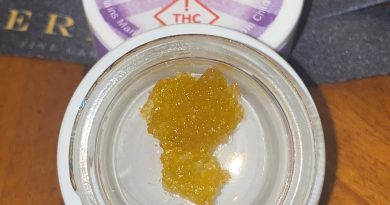 orange-mo live resin by viola concentrate review by no.mids