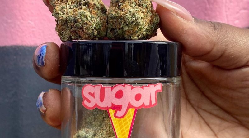 sugar cone by connected cannabis co strain review by upinsmokesession
