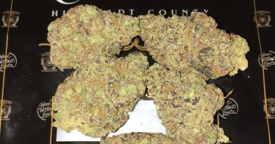 super kush mintz by lionboldt farms strain review by boofbusters420