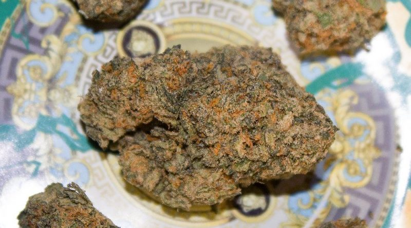 verzace dizhezzz by jelly cannabis co strain review by bigwhiteash