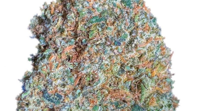 blue icee by only the flame strain review by budfinderdc