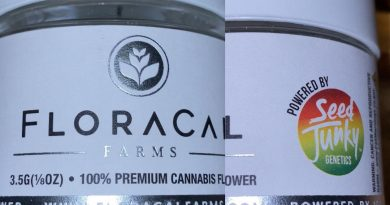 funnel cake by floracal strain review by trunorcal420