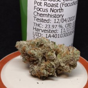 pot roast by focus north strain review by pdxstoneman 2