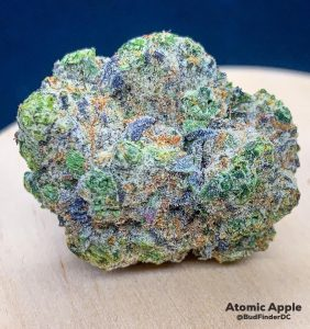atomic apple by paramount fleur strain review by budfinderdc