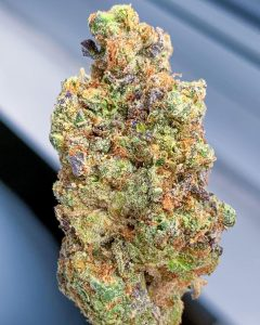 gmo cookies by farmer's choice strain review by budfinderdc 2