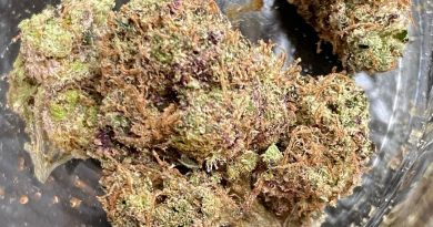 triple og purple pheno by afro genetics strain review by jean_roulin_420 2
