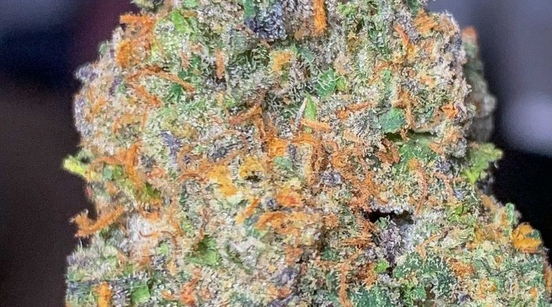 white bacio by paramount fleur strain review by budfinderdc