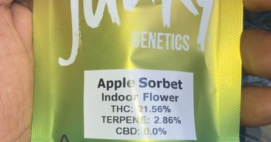 apple sorbet by seed junky genetics strain review by sjweed.review