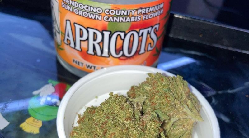 apricots by sticky fields strain review by sjweed.review