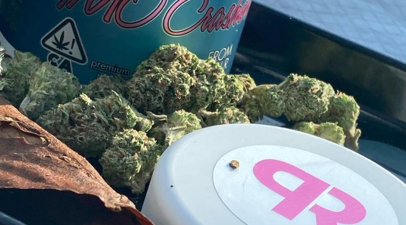 gmo crashers by pacific reserve strain review by sjweed.review