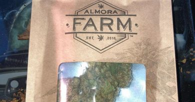 kush mint by almora farm strain review by sjweed.review