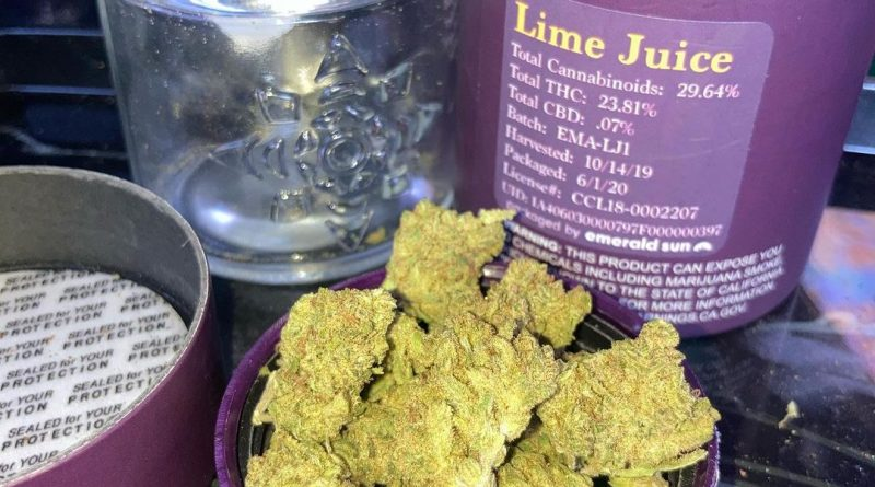 lime juice by esensia gardens strain review by sjweed.review