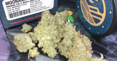 moonana wreck by fig farms strain review by sjweed.review