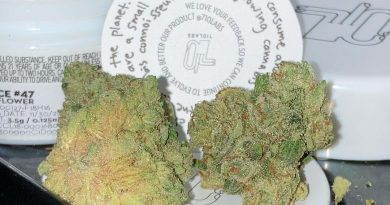 pan dulce 47 by 710 labs strain review by sj.weedreview